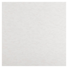 Whiteout Vinyl Composition Tile (VCT)57518