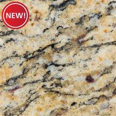 New! Sample - Custom Countertop Santa Cecilia Granite