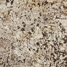 Sample - Custom Countertop Cyprus Granite