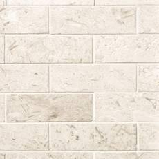 Fossil Brushed Limestone Mosaic