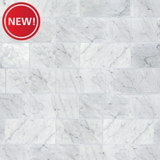 New! Bianco Carrara Honed Marble Tile