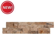 New! Tuscany Scabas Travertine Panel Ledger