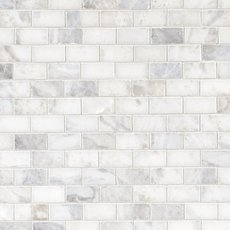 Sahara Carrara Polished Brick Marble Mosaic