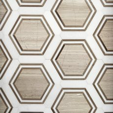 Thassos Valentino Framed Hexagon Marble Mosaic