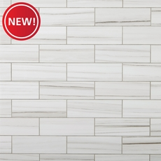 New! Pietra Linear Polished Porcelain Tile
