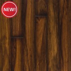 New! Regal Maple High Gloss Laminate