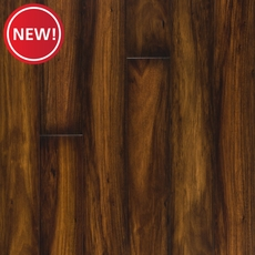 New! Regal Maple High Gloss Laminate
