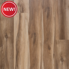 New! Spalted Oak Plank with Cork Back