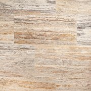 Silver Coral Polished Travertine Tile