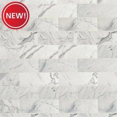 New! Statuario Polished Marble Tile