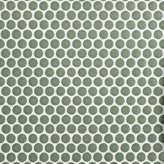 Olive Polished Porcelain Penny Mosaic