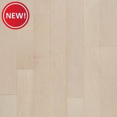New! Premier Performance Misty Forest Maple Acrylic Infused Engineered Hardwood