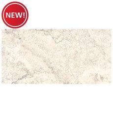 New! Tarsus Almond II Matte Porcelain Tile