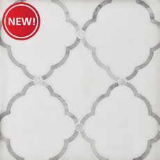 New! Eden Thassos Mother of Pearl Waterjet Mosaic
