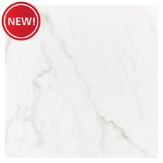 New! Venato Polished II Polished Porcelain Tile
