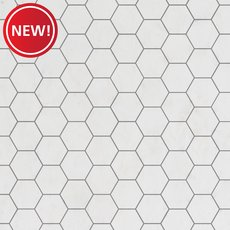 New! Dolomite Premium 3 in. Hexagon Marble Mosaic