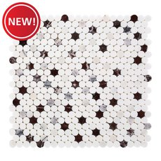 New! Sommelier Dolomite Marble Penny Mosaic