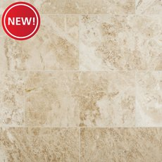 New! Cappuccino Polished Marble Tile