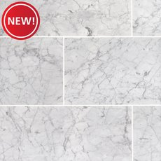New! Statuarietto Polished Marble Tile