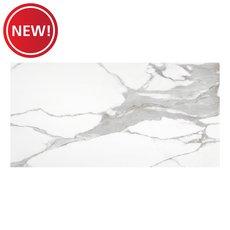 New! Brindisi Bianco II Matte Porcelain Tile