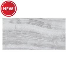New! Giardini Gray Polished Porcelain Tile
