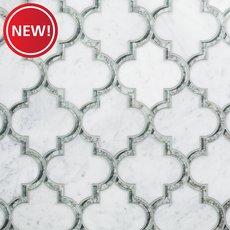 New! Electra II Bianco Carraro Mirror Polished Waterjet Mosaic